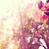 Foglie di rosso con il fondo vago degli alberi Fotografia Stock