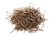 Foglie di tè asciutte nere isolate su fondo bianco Fotografia Stock Libera da Diritti