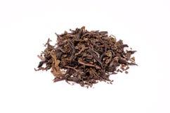 Foglie di tè cinesi Immagini Stock Libere da Diritti