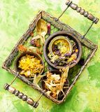 Foglie di tè di erbe Immagini Stock