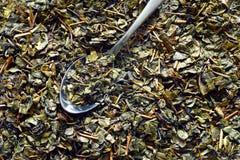 Foglie di tè secche Fotografie Stock Libere da Diritti