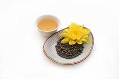 Foglie di tè torte ginseng con il fiore giallo Fotografia Stock