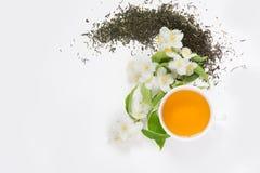 Foglie di tè verdi asciutte del gelsomino con i fiori del gelsomino e la tazza freschi di tè su fondo bianco Immagine Stock