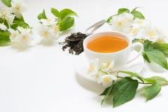 Foglie di tè verdi asciutte del gelsomino con i fiori del gelsomino e la tazza freschi di tè su fondo bianco Spazio per testo Fotografie Stock Libere da Diritti