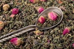 Foglie di tè verdi con i germogli rosa immagine stock