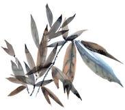 Foglie dipinte dell'acquerello Fotografie Stock