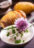 Foglie e fiore freschi di una pianta della erba cipollina Fotografia Stock