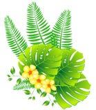 Foglie e fiori tropicali Fotografia Stock Libera da Diritti