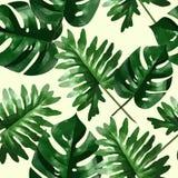Foglie e fiori tropicali della palma Reticolo senza giunte Fotografia Stock