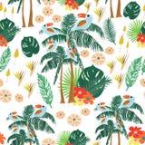 Foglie e fiori tropicali, su un fondo bianco illustrazione di stock