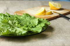 Foglie e limone dell'insalata immagine stock libera da diritti
