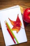 foglie e scuole di autunno Immagine Stock