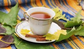 Foglie e tè di autunno su un plaid immagine stock