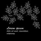 Foglie eleganti in bianco e nero con il modello per una carta, vettore delle vene illustrazione vettoriale