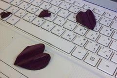 Foglie in forma di cuore su un computer portatile Fotografie Stock