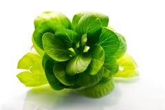 Foglie fresche degli spinaci Fotografia Stock