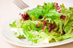 Foglie fresche dell'insalata mista Fotografie Stock