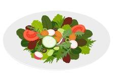 Foglie fresche dell'insalata mista con le verdure Immagini Stock