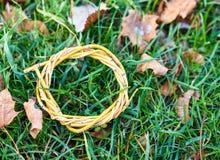 Foglie gialle sulla struttura dell'erba fotografia stock