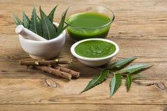 Foglie medicinali di Neem in mortaio e pestello con la pasta del neem, il succo ed i ramoscelli fotografia stock libera da diritti