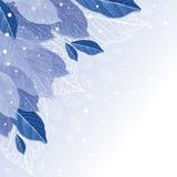 Foglie nei precedenti di inverno del gelo Immagine Stock