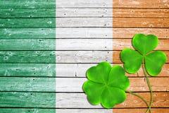 Foglie o acetoselle verdi del trifoglio su fondo di legno nel colore della bandiera dell'Irlandese Fotografie Stock