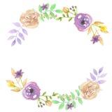 Foglie porpora di Garland Spring Summer Wedding Berries della corona della foglia dell'acquerello Fotografie Stock