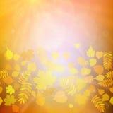 Foglie rosse e gialle di Autumn Colorful illustrazione di stock