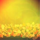 Foglie rosse e gialle di Autumn Colorful illustrazione vettoriale