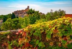 Foglie rosse e verdi dell'uva e punto di vista panoramico di San-Paul-de-Vence town in Provenza, Francia immagine stock libera da diritti