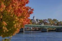 Foglie Rosso-arancio luminose un giorno dell'autunno fotografie stock