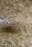 Foglie secche dell'origano in un cucchiaio Fotografia Stock Libera da Diritti