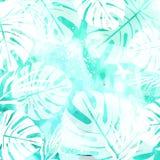 Foglie sul fondo verde dell'acquerello Immagini Stock Libere da Diritti