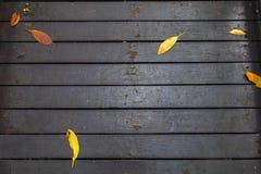 Foglie sul pavimento di legno per fondo fotografia stock