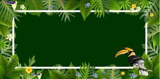 Foglie tropicali con i vettori degli ambiti di provenienza dell'uccello Immagini Stock Libere da Diritti