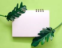 Foglie tropicali con il taccuino in bianco fotografia stock