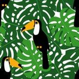 Foglie tropicali di monstera con il modello senza cuciture dei tucani Fondo verde delle foglie di palma royalty illustrazione gratis