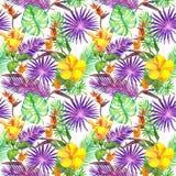 Foglie tropicali, fiori esotici Reticolo senza giunte della giungla watercolor Fotografie Stock