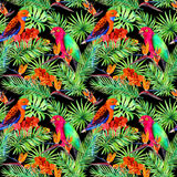 Foglie tropicali, uccelli del pappagallo, fiori esotici Modello senza cuciture della giungla su fondo nero watercolor illustrazione di stock