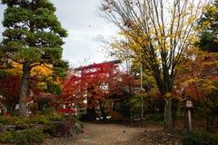 Foglie variopinte degli alberi in giardino giapponese immagini stock