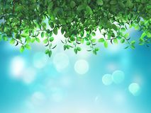 foglie verdi 3D su un fondo blu defocussed illustrazione vettoriale