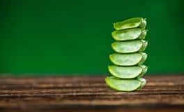 Foglie verdi del primo piano della pianta dell'aloe Fotografie Stock Libere da Diritti