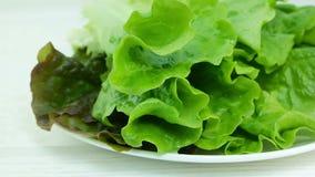 Foglie verdi fresche della lattuga sul piatto bianco che segue colpo video d archivio