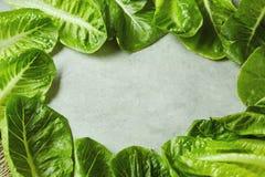 Foglie verdi fresche della lattuga sulla tavola Fotografia Stock Libera da Diritti