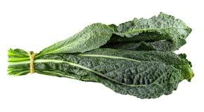 Foglie verdi organiche fresche del cavolo isolate sopra fondo bianco immagini stock libere da diritti