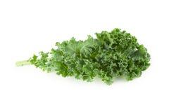 Foglie verdi organiche fresche del cavolo isolate sopra fondo bianco fotografie stock