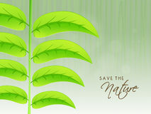 Foglie verdi per la natura di risparmi Fotografia Stock