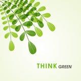 Foglie verdi per la natura di risparmi Immagine Stock