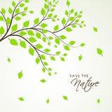 Foglie verdi per la natura di risparmi Immagini Stock