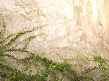 Foglie verdi sul fondo del mattone della parete fotografia stock